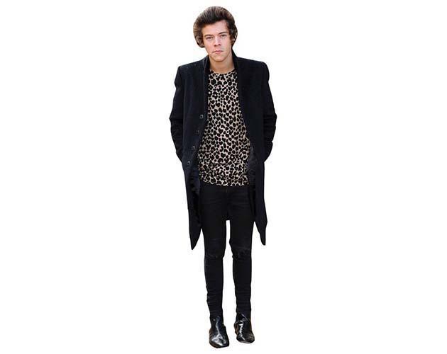 Harry Styles 2013 Cardboard Cutout