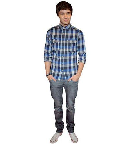 A Lifesize Cardboard Cutout of Liam Payne wearing a plaid shirt