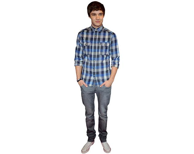 A Lifesize Cardboard Cutout of Liam Payne wearing a plaid shirt