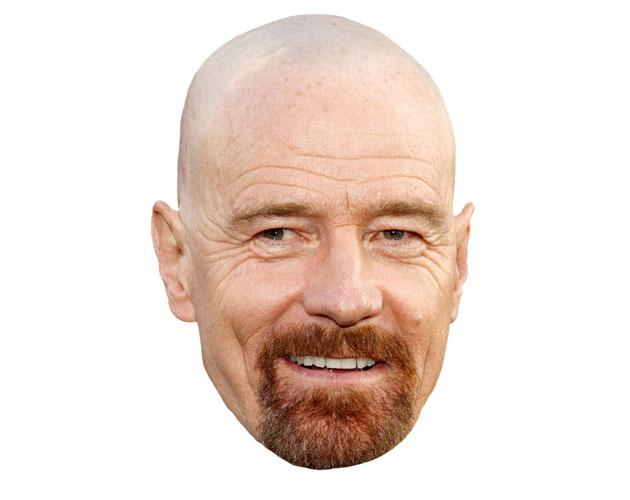 A Cardboard Celebrity Bryan Cranston Mask