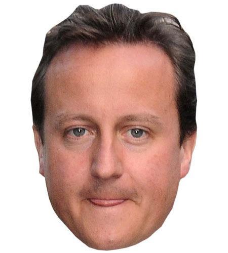 A Cardboard Celebrity David Cameron Mask
