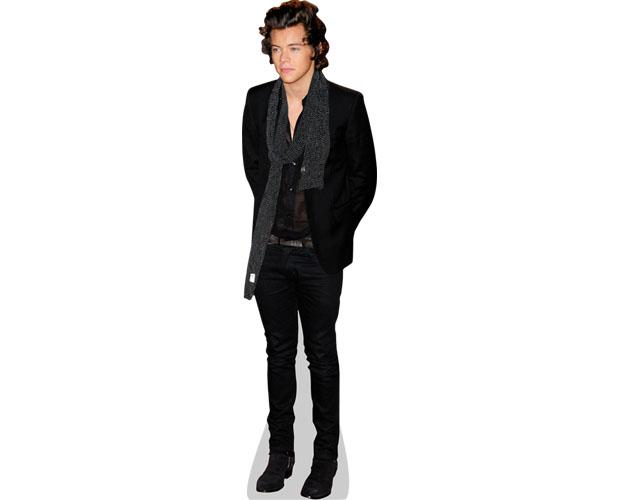A Lifesize Cardboard Cutout of Harry Styles wearing a scarf