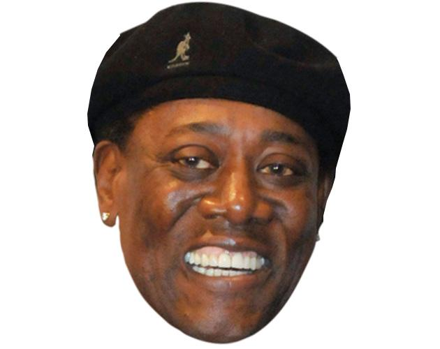 A Cardboard Celebrity Mask of Clarence Clemons
